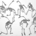 Print: 6 Drawings of Skeletons