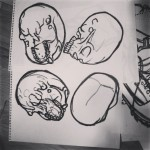 Skull drawings #drawings #drawing #draw  #skull