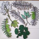 Leaf drawings.