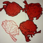 Cabbage drawings. Object #222